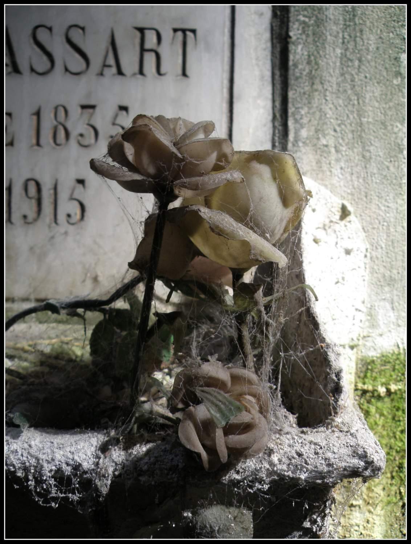 Per chi i fiori non riceve più